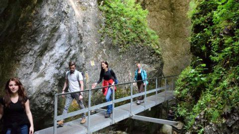Drumetie in Canionul 7 Scari